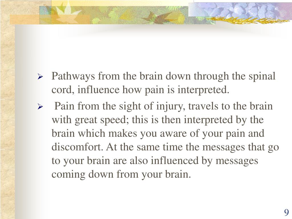 Pathways from the brain down through the spinal cord, influence how pain is interpreted.
