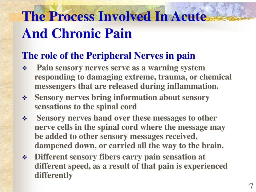 The Process Involved In Acute And Chronic Pain