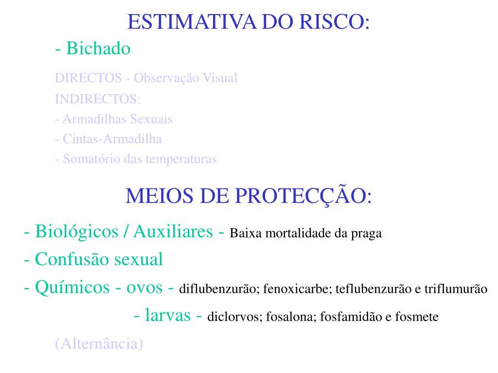 ESTIMATIVA DO RISCO: