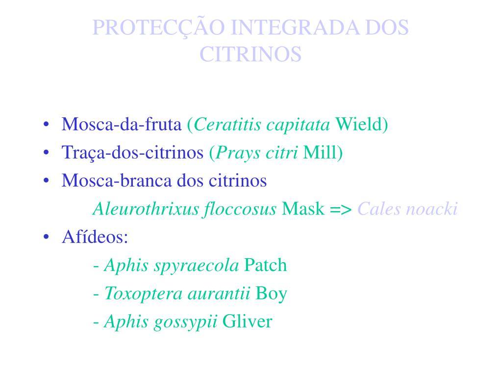 PROTECÇÃO INTEGRADA DOS CITRINOS