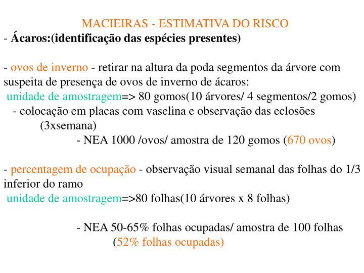 MACIEIRAS - ESTIMATIVA DO RISCO
