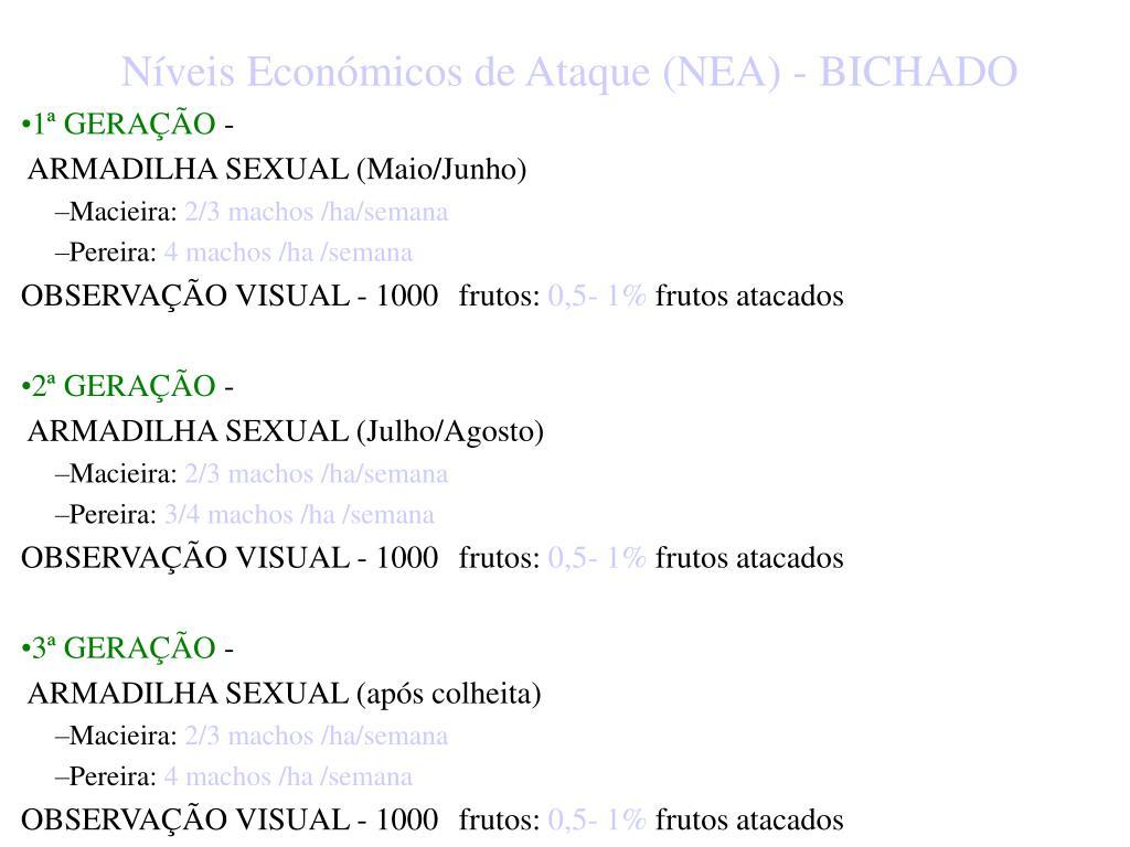 Níveis Económicos de Ataque (NEA) - BICHADO