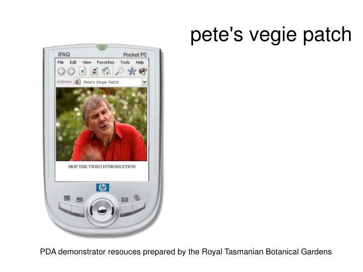 pete's vegie patch
