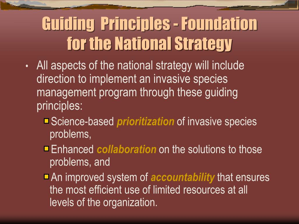 Guiding  Principles - Foundation