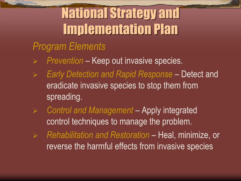 National Strategy and Implementation Plan