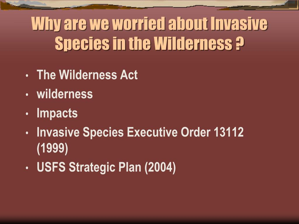 Why are we worried about Invasive Species in the Wilderness ?