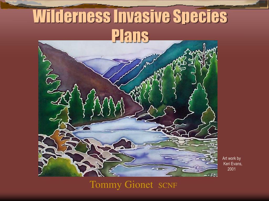 Wilderness Invasive Species Plans