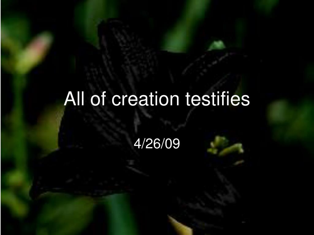 All of creation testifies