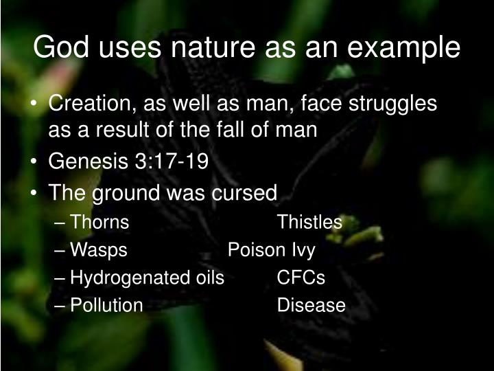 God uses nature as an example