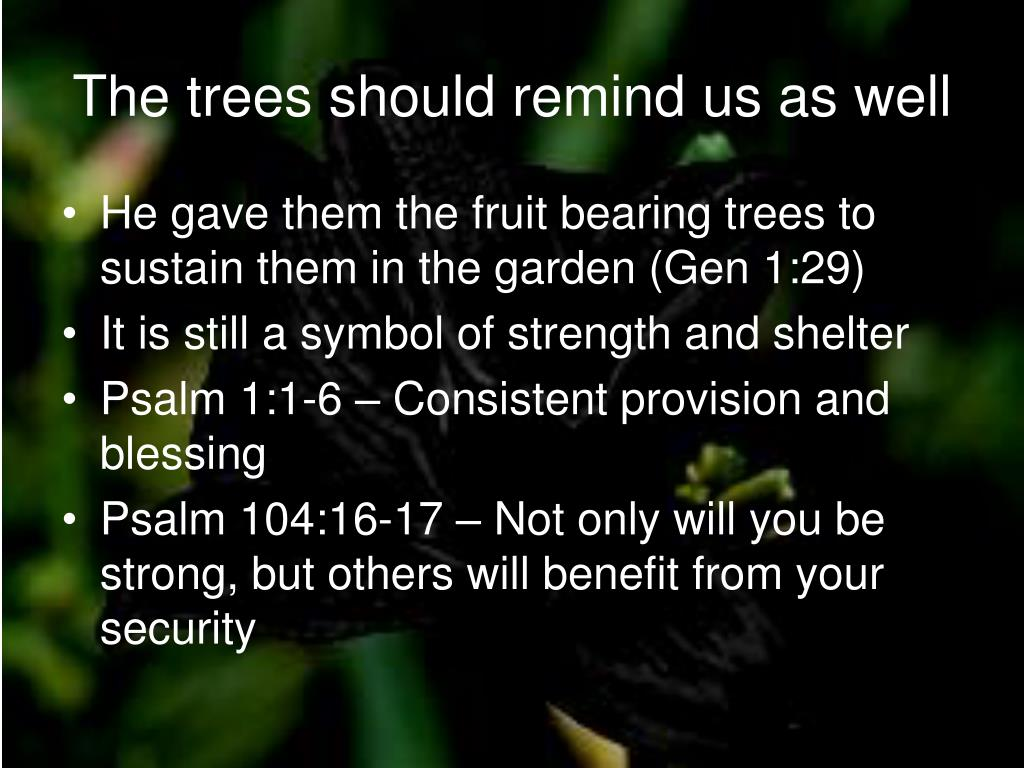 The trees should remind us as well