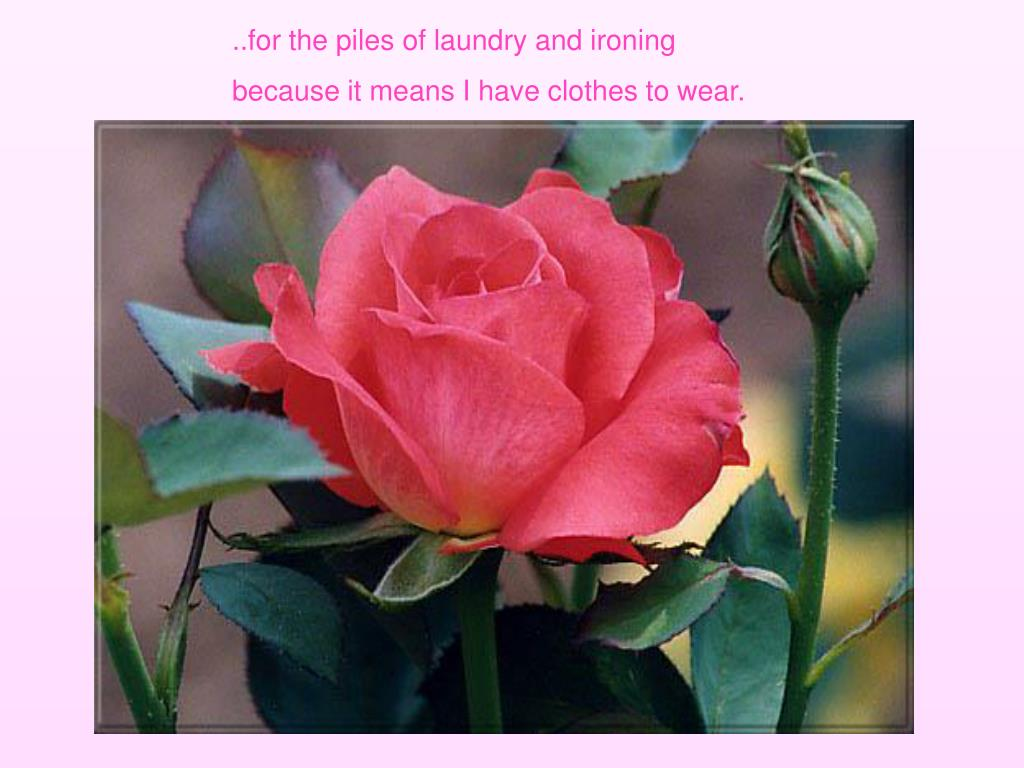 ..for the piles of laundry and ironing