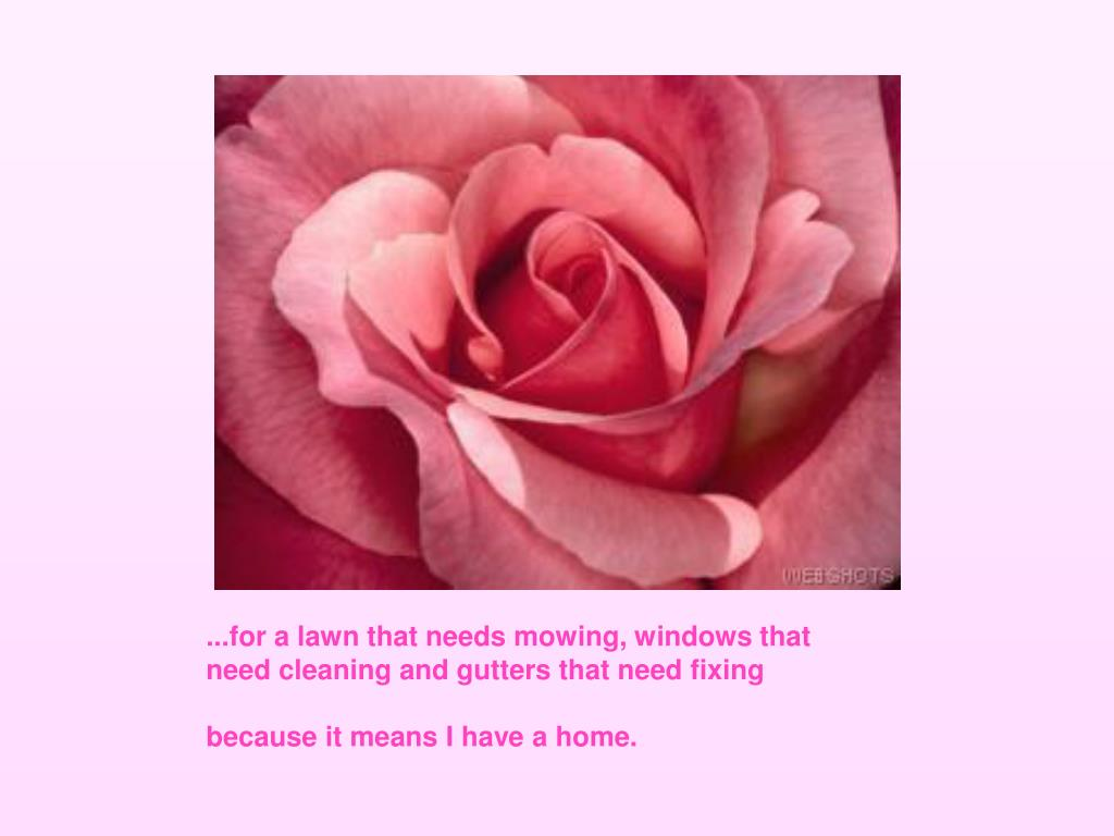 ...for a lawn that needs mowing, windows that need cleaning and gutters that need fixing