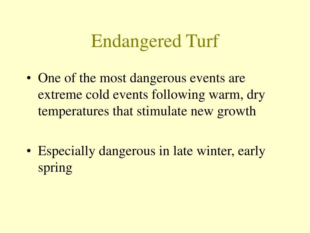 Endangered Turf