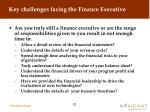key challenges facing the finance executive22