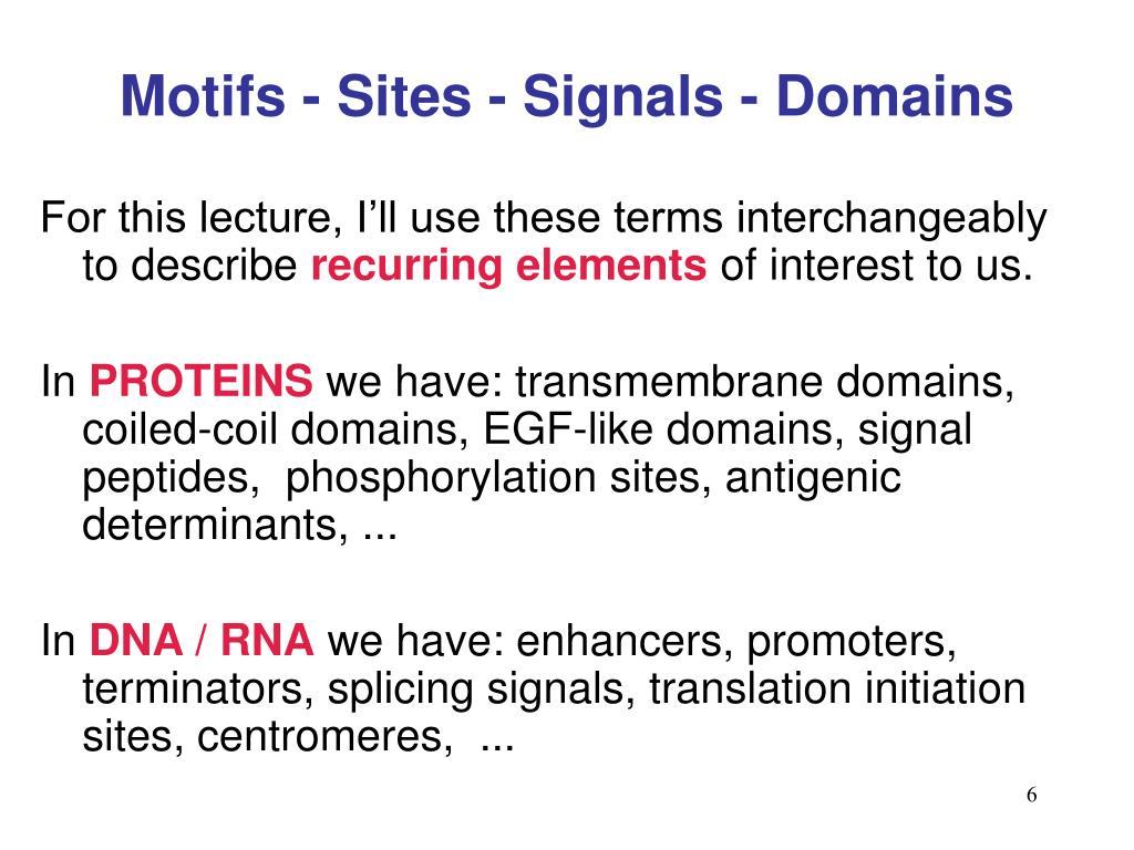 Motifs - Sites - Signals - Domains