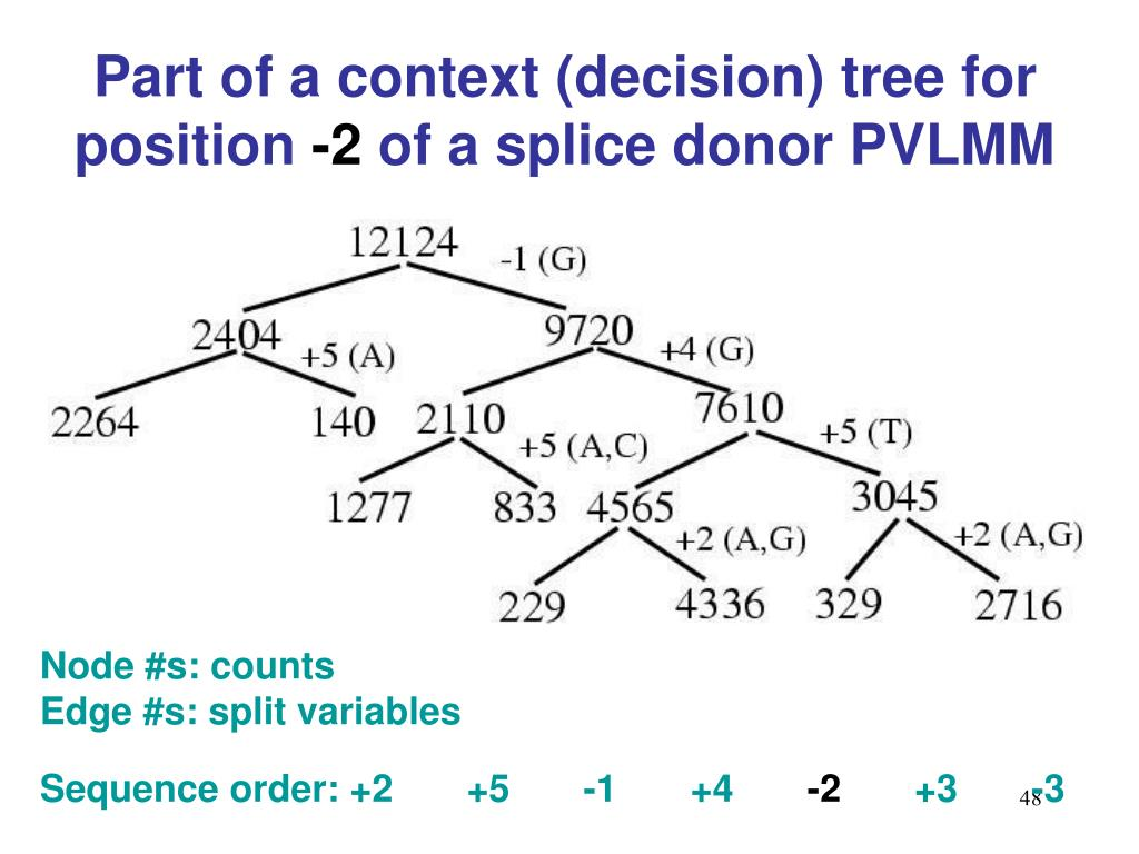Part of a context (decision) tree for position