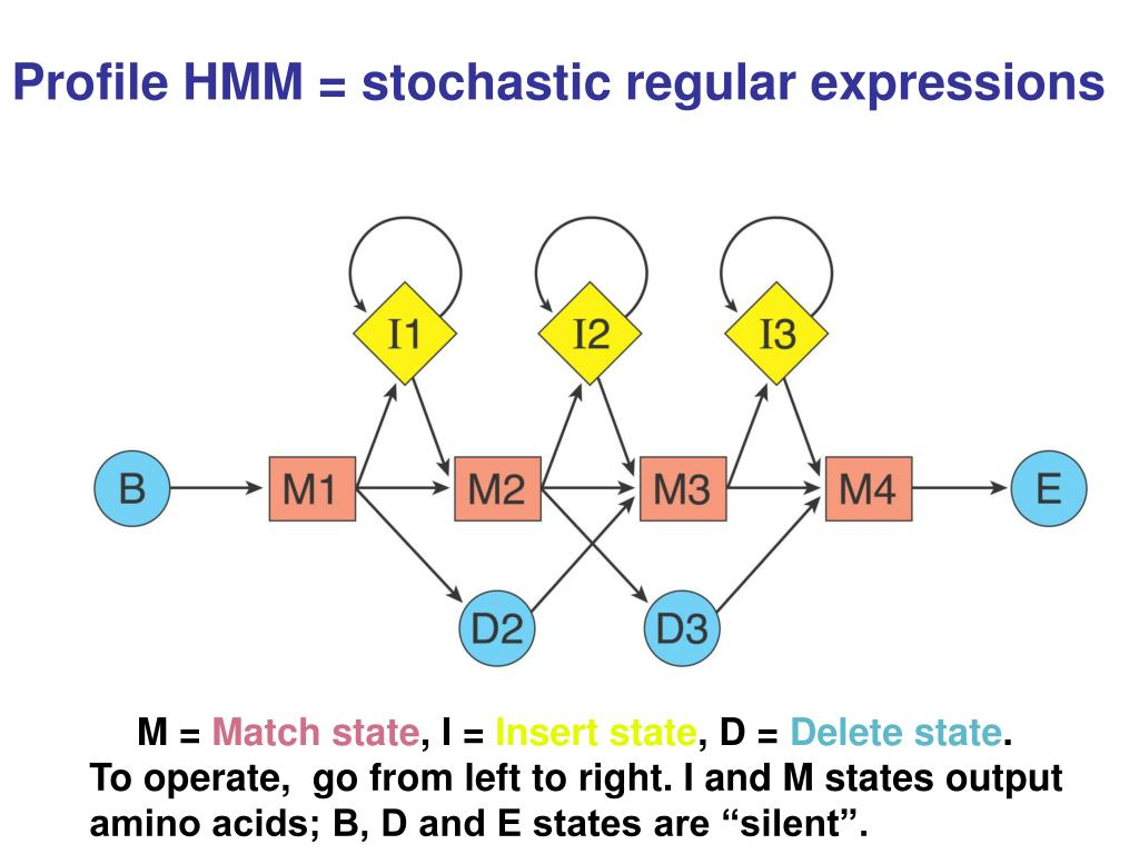 Profile HMM = stochastic regular expressions