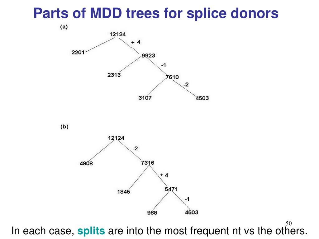 Parts of MDD trees for splice donors