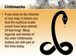 chitimacha5