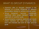 what is group dynamics