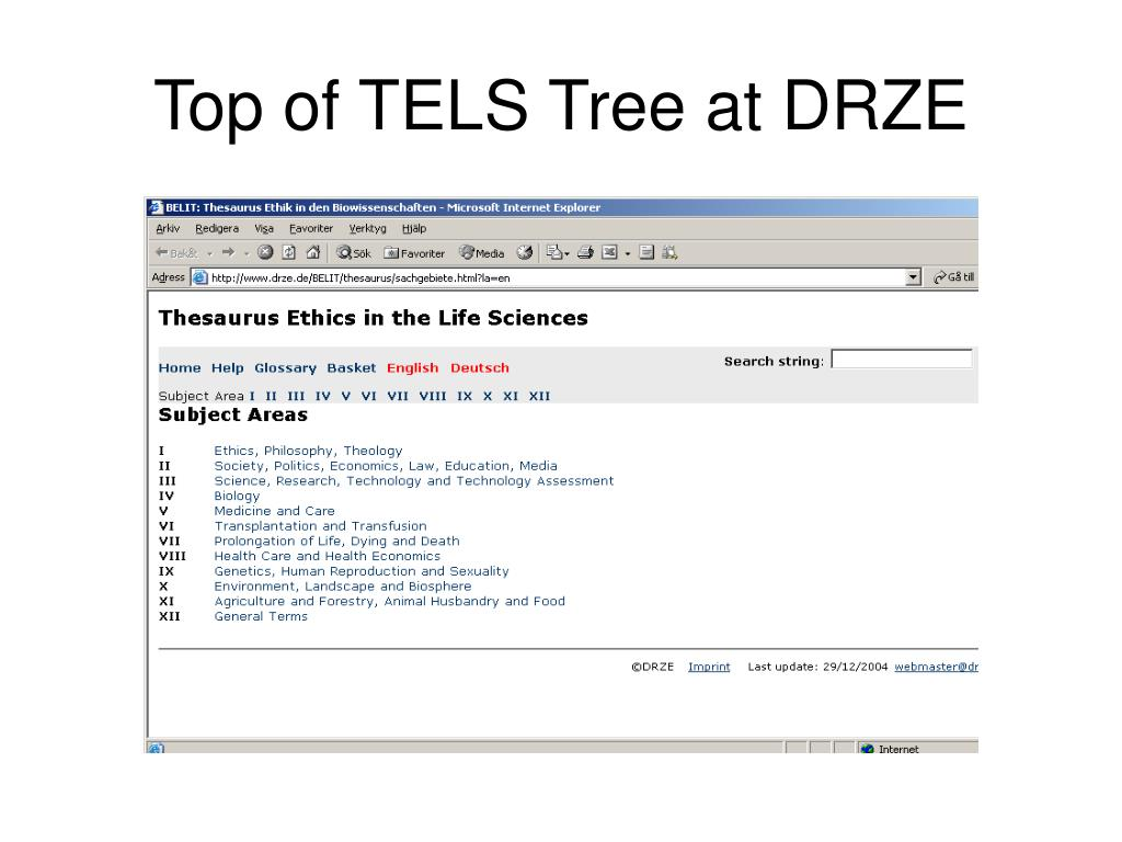 Top of TELS Tree at DRZE
