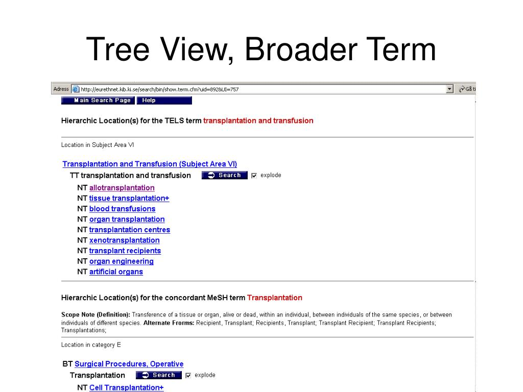 Tree View, Broader Term