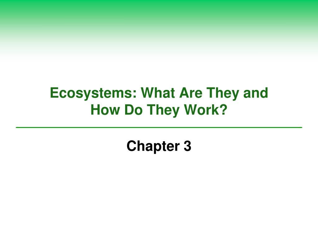 ecosystems what are they and how do they work l.
