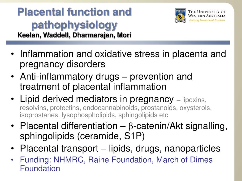 Placental function and
