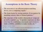 assumptions in the basic theory
