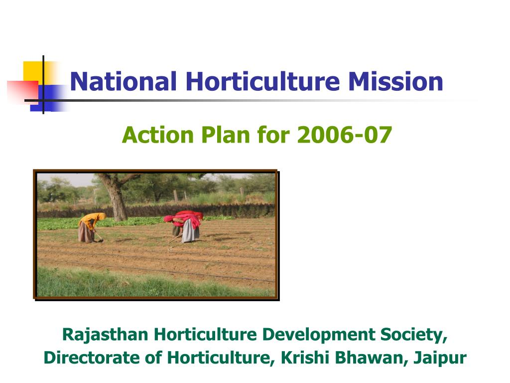 national horticulture mission l.