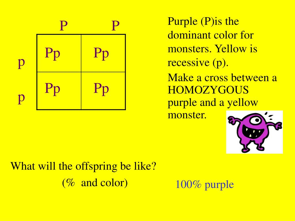 Purple (P)is the dominant color for monsters. Yellow is recessive (p).