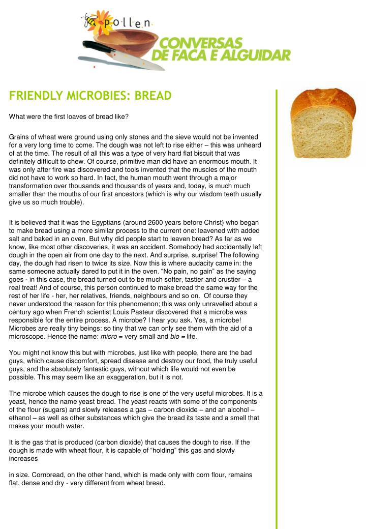 FRIENDLY MICROBIES: BREAD