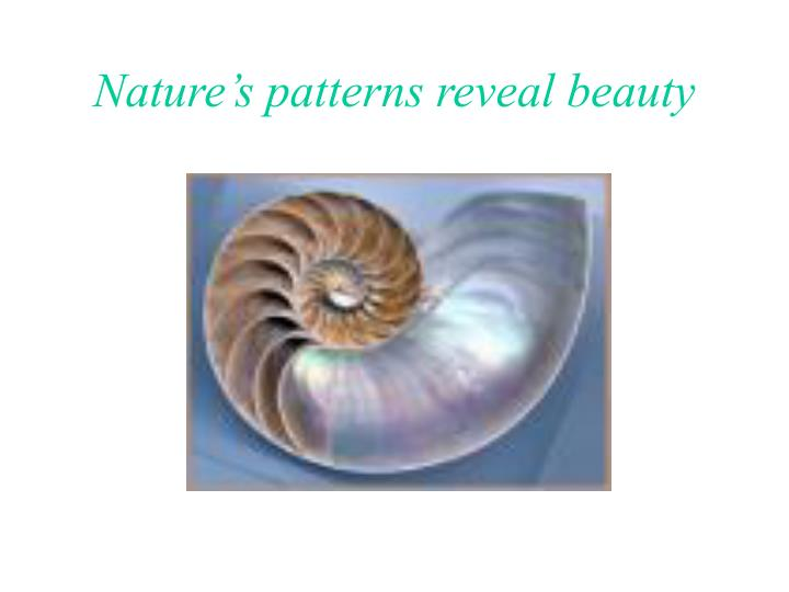 Nature s patterns reveal beauty