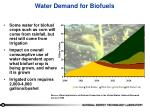 water demand for biofuels