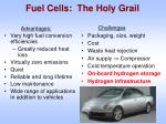 fuel cells the holy grail