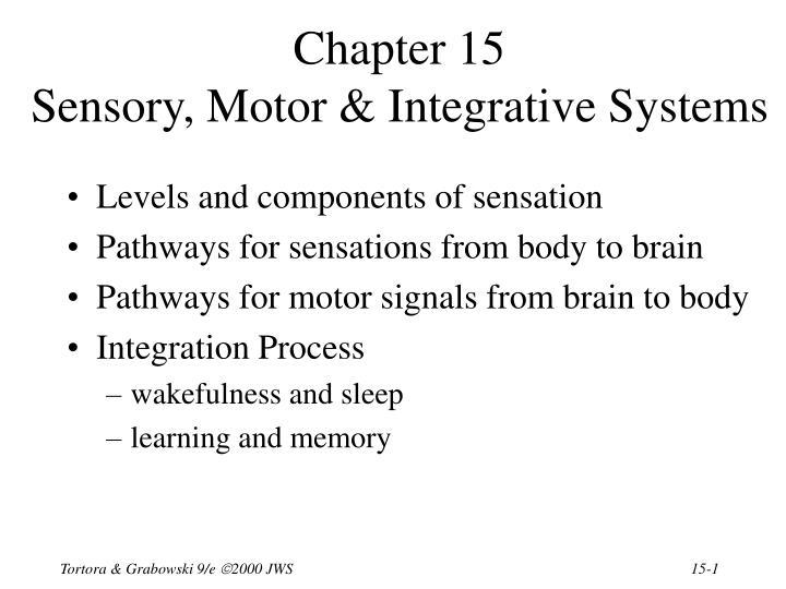 Chapter 15 sensory motor integrative systems