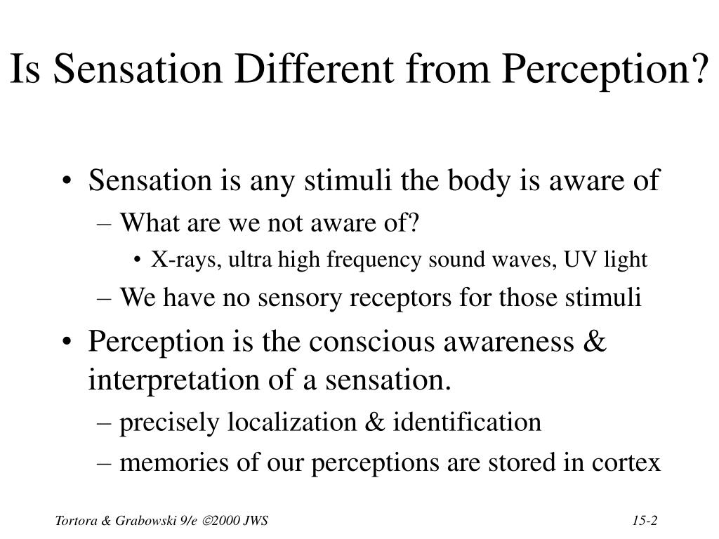 Is Sensation Different from Perception?