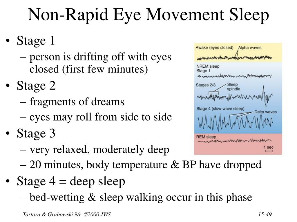Non-Rapid Eye Movement Sleep