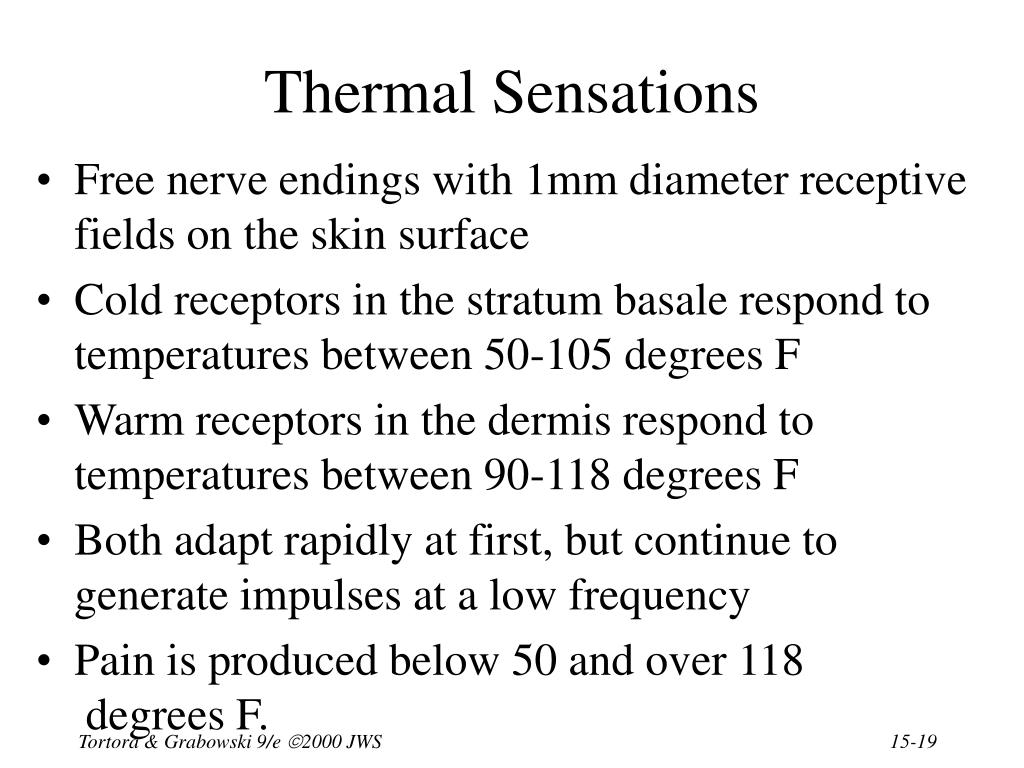 Thermal Sensations