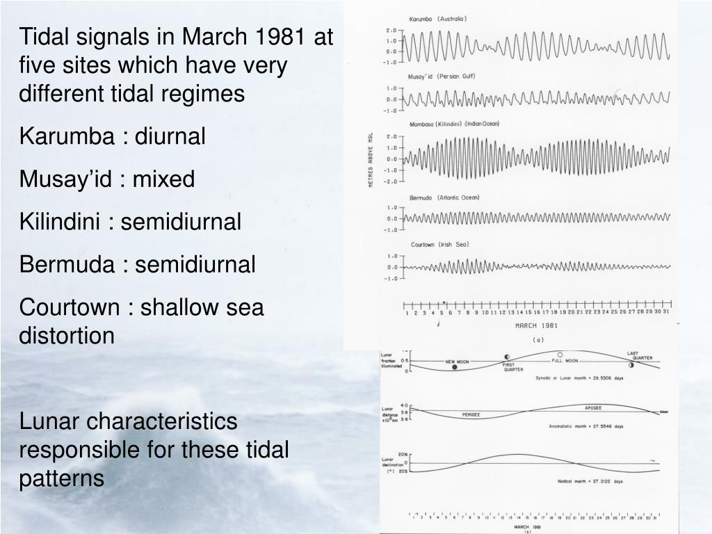 Tidal signals in March 1981 at five sites which have very different tidal regimes