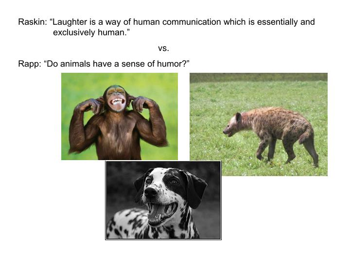 """Raskin: """"Laughter is a way of human communication which is essentially and exclusively human."""""""
