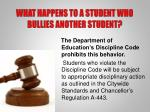 what happens to a student who bullies another student