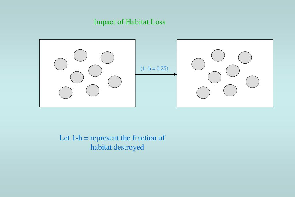 Impact of Habitat Loss