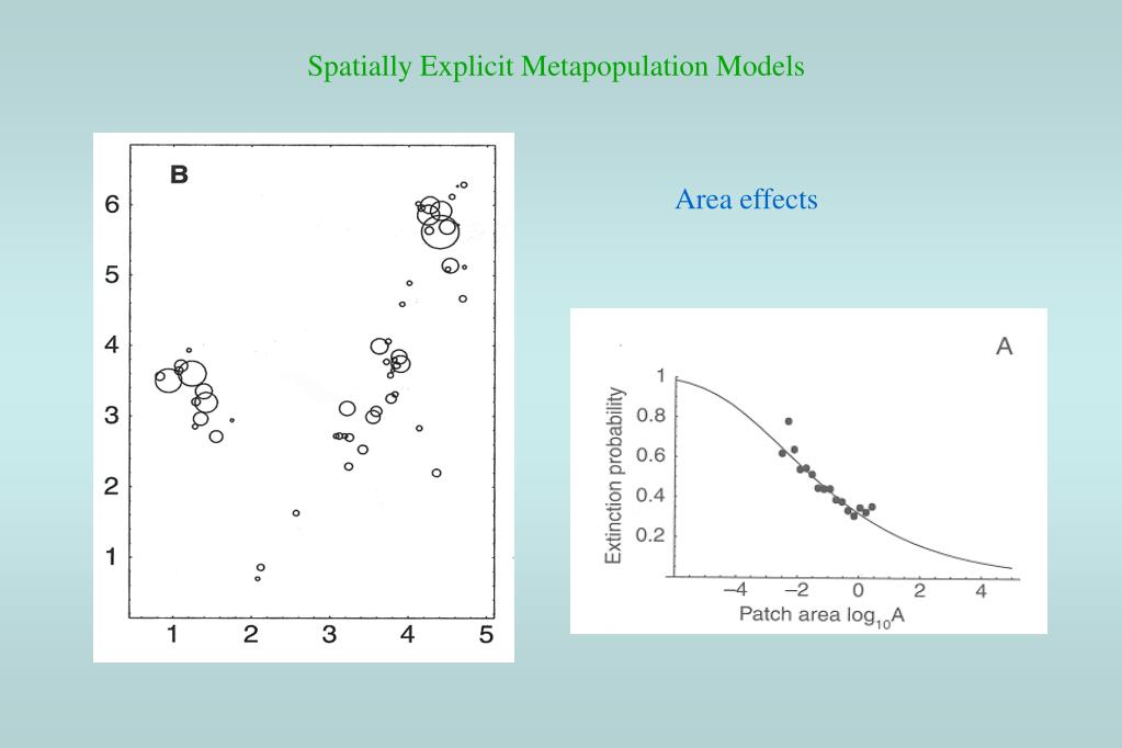 Spatially Explicit Metapopulation Models