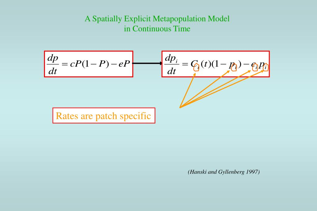 A Spatially Explicit Metapopulation Model