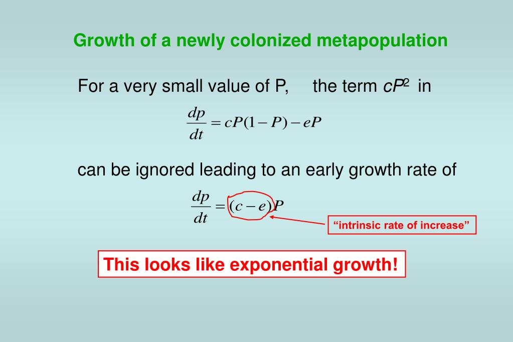 Growth of a newly colonized metapopulation