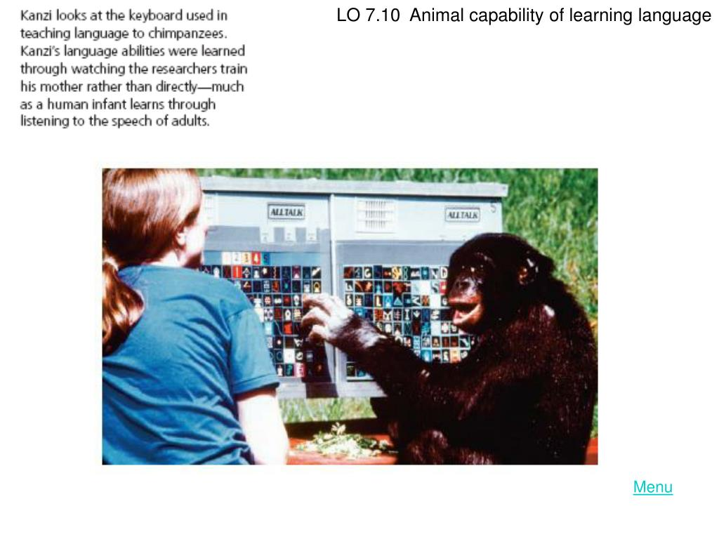 LO 7.10  Animal capability of learning language