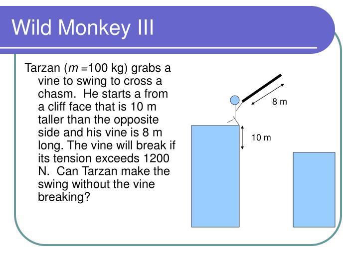 Wild monkey iii
