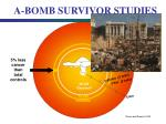 a bomb survivor studies