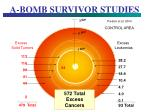 a bomb survivor studies90